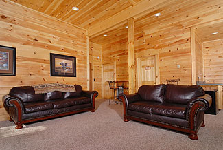 cabin with leather furniture
