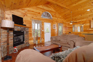 cabin with an open livingroom