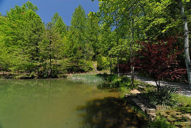 Allen S Hideaway Hidden Lakes Estates 153 1 Bedroom