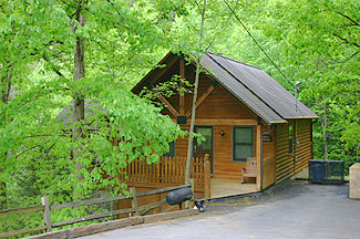 Pigeon Forge cabin in the woods with access to a stocked Fishing Pond