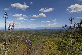 Serenity like no other on Bluff Mountain just a short drive from Pigeon Forge