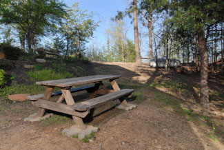 Pigeon Forge Outdoor Picnic Table