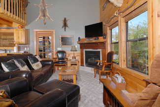 Pigeon FOrge Cabin with a livingroom area with a flat screen tv and gas fireplace and lofted ceilings