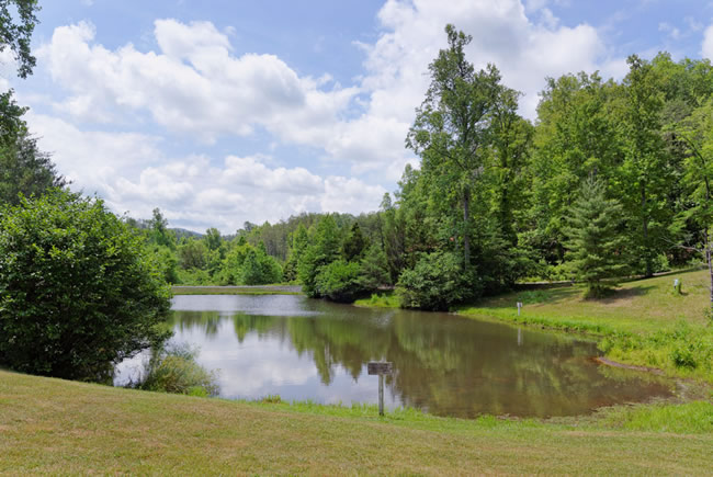 Pigeon Forge Cabin Rental with Access to a Stocked Fishing Pond with Catch and Release fishing