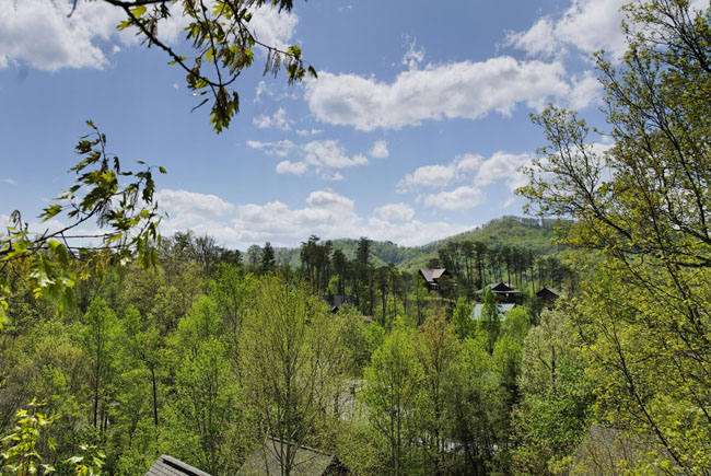 Pigeon Forge Wooded Chalet View