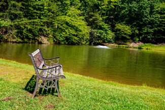 Pigeon Forge Cabin Rental that features a stocked fishing pond